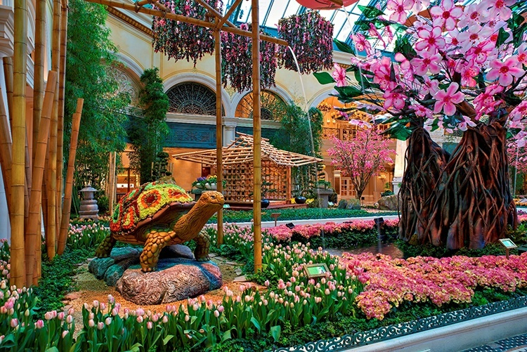 Bellagio Celebrates Japanese Culture With Vibrant Spring Conservatory Display