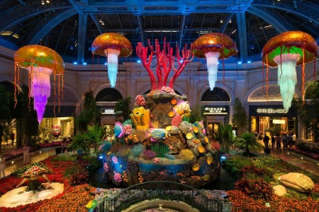 Bellagio Conservatory & Gardens Under The Sea