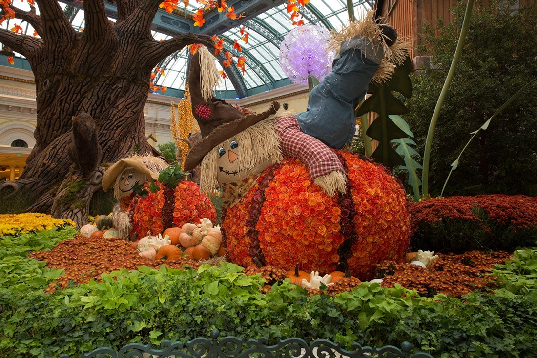 Enchanted Fall Forest Delights At Bellagio\'s Conservatory And ...