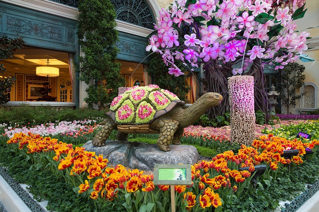 Japanese Culture Honored In Bellagio Conservatory Botanical Gardens 39 New Spring Display