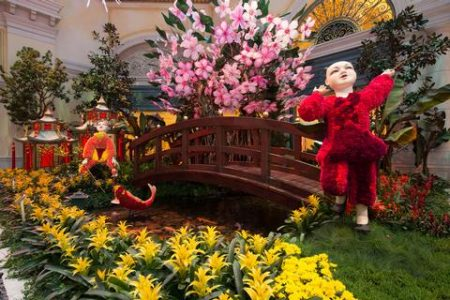 Celebrate The Lunar New Year At Bellagio's Conservatory & Botanical Gardens